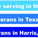 Number of women veterans in Texas and Houston area